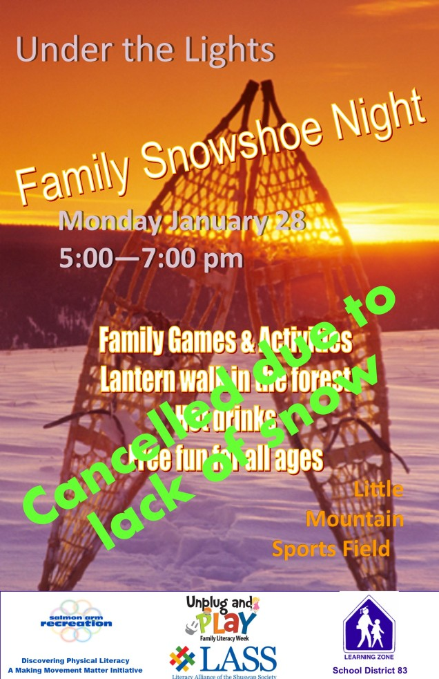 under the lights family snow shoe night
